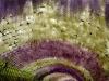 I glicini del Wisteria Tunnel