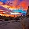 Joshua Tree National Park in California: due deserti in un parco