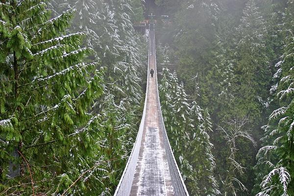 Ponte sul Capilano in Canada